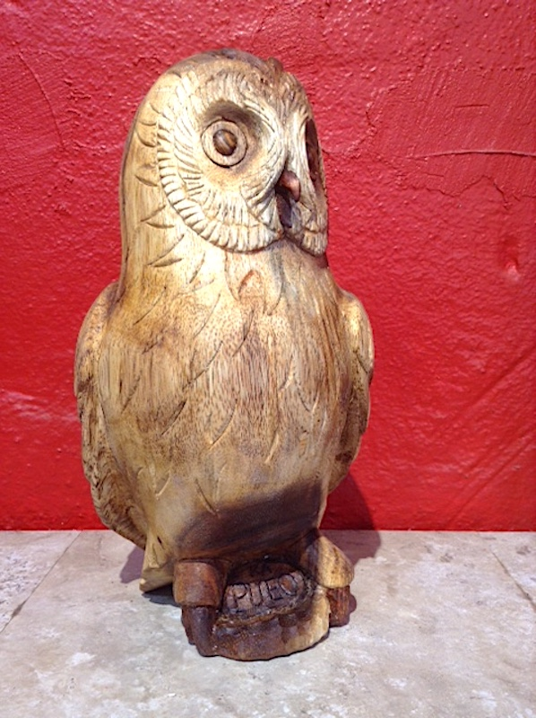 "The greatly revered Hawaiian owl (Pueo),""The protector."""